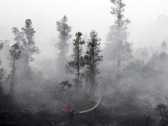 Kebakaran Hutan Di Riau Di Sengaja Oleh Orang